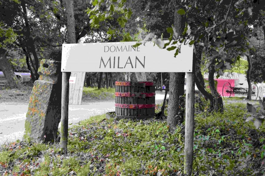 Domaine Milan, Saint-Rémy-de-Provence